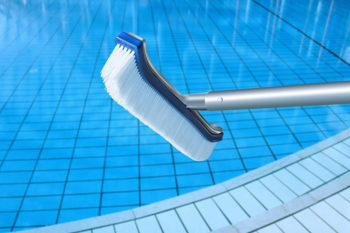 Best Pool Brush