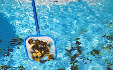 Pool Skimmer Featured Image