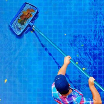 Pool Skimmer Types